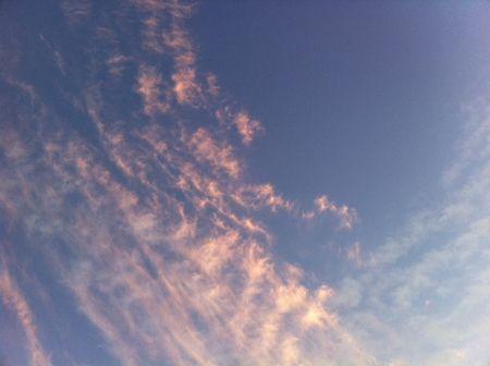 虫の声を聞き、空を見上げながら
