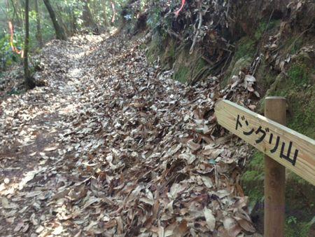 走ることの壁をまたひとつ超えて、変態道へ。