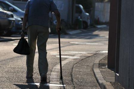 日本改革原案 2050年 成熟国家への道